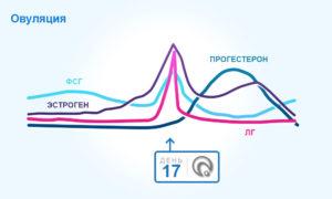 Овуляция и прогестерон