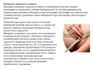 Окружность живота при беременности