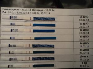ХГЧ 295 (8ДЗ) - плохая динамика?