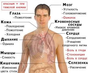 Низкий гемоглобин и куда обратиться