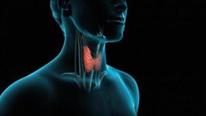 Омега 3 при гипотериозе щитовидной железы