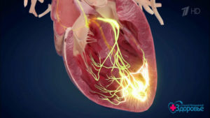 Не прекращающаяся аритмия-сердце как будто сжато