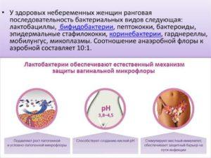 Отсутствуют лактобактерии во влагалище