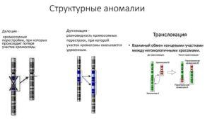 Обнаружена делеция хромосомы