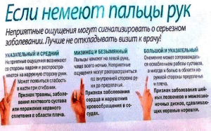 Онемение указательного и среднего пальца