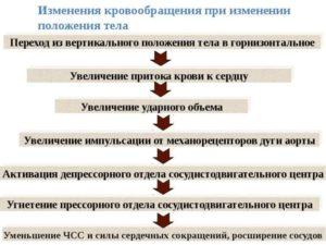 Головокружения в вертикальном положении