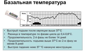 Низкая температура после месячных