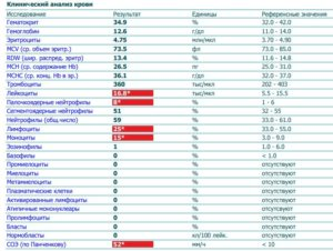 Общий анализ крови у ребенка 8 лет с пониженными абс лимфоцитами