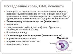 Объясните повышение моноцитов