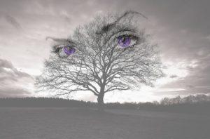 Глаза как в тумане