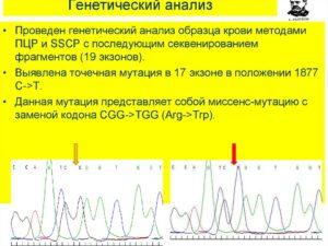 Генетический анализ бесплатно