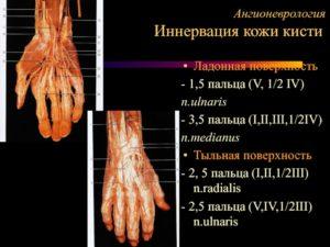 Гиперпараестезия 4 и 5 пальца левой кисти в районе иннервации n. Ulnaris