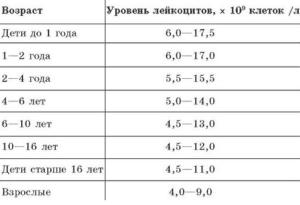 Низкие лейкоциты у ребёнка 2 лет