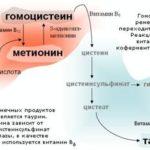 Падает гемоглобин у ребенка