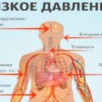 Общий анализ крови перед прививкой